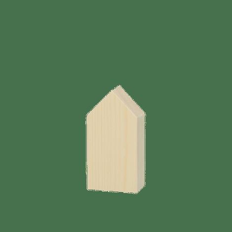 Houten huisje 5x10